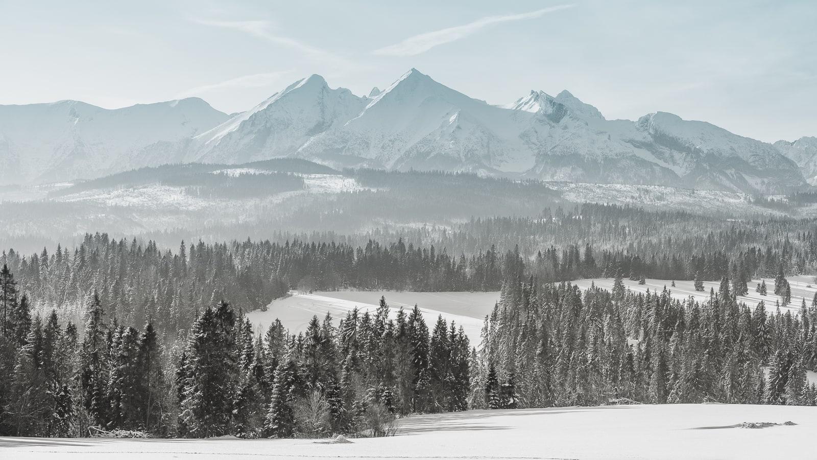 Zapowiedź zimowej sesji ślubnej w Tatrach